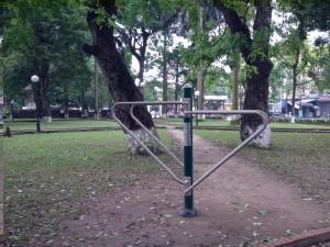 VIVADO@Vườn Hoa TP Bắc Ninh (19)