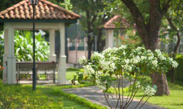 VIVADO@Sedona Suites Hanoi