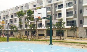 Phát triển bóng rổ học đường